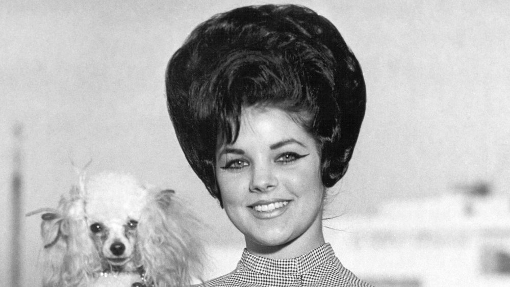 Priscilla Presley holds a poodle in Memphis in 1963