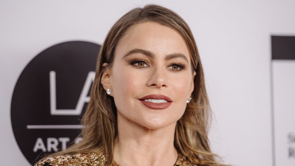 Sofia Vergaras brother Julio deported from US after 30