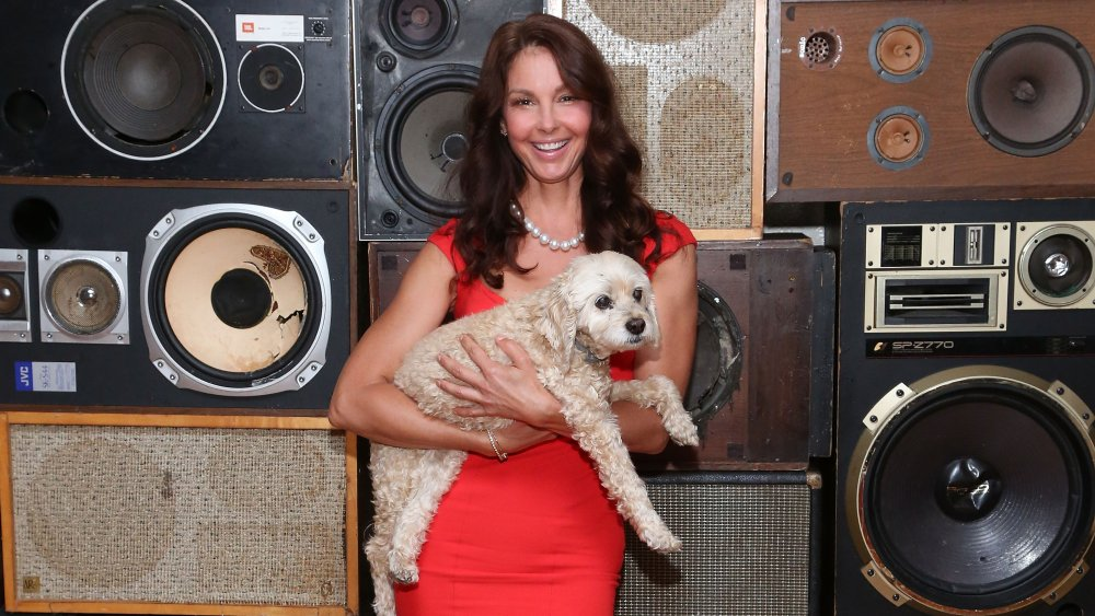 Ashley Judd in a red dress and white pearl necklace, smiling while holding her late dog, Shug