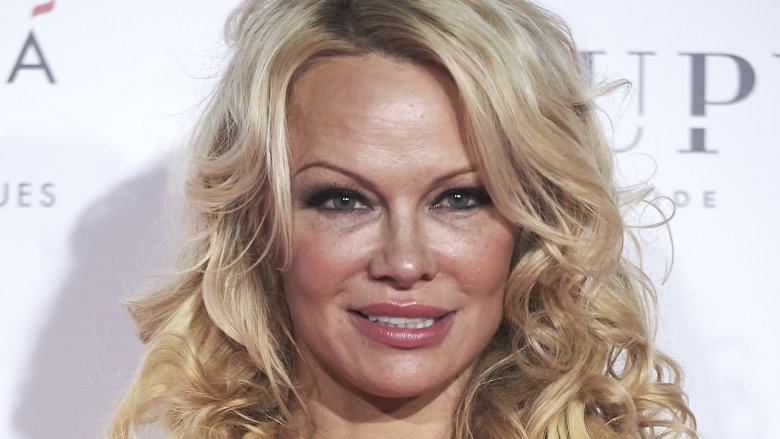 Meghan McCain and Pamela Anderson clash on The View